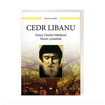 Cedr Libanu. Święty Charbel Makhlouf. Mnich i pustelnik - Salvatore Garofalo : Książka