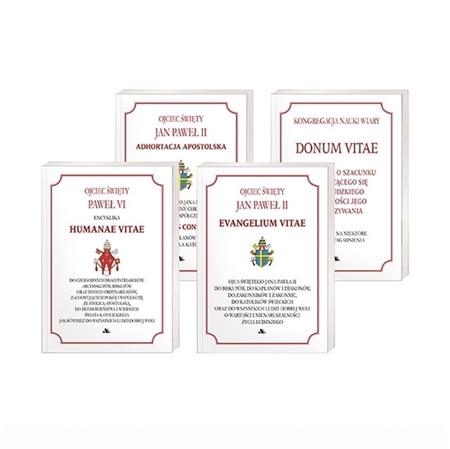 Dokumenty Kościoła o życiu i małżeństwie : Książka