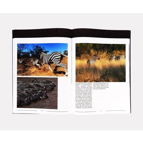 Zwierzęta świata : Album - Prezentacja