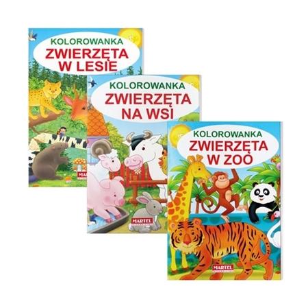 Kolorowanki: Zwierzęta w ZOO, w lesie i na wsi : Książeczki