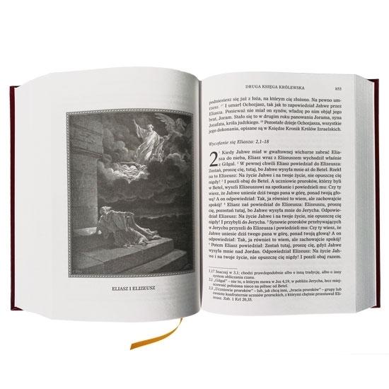 Pismo Święte Starego Testamentu, t. 1-2. Duże litery : Ilustracje