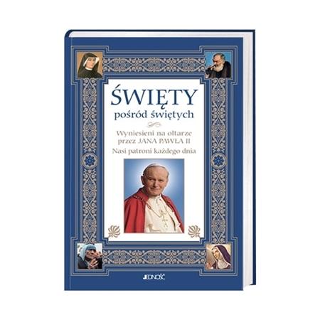 Święty pośród świętych : Książka