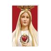 Matki Boża Fatimska - Obrazek kolędowy - OB44