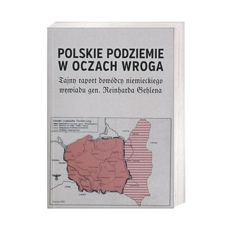 Polskie podziemie w oczach wroga : Książka