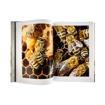 Pszczoły w ulu - Wielka encyklopedia pszczelarstwa - zawartość książki