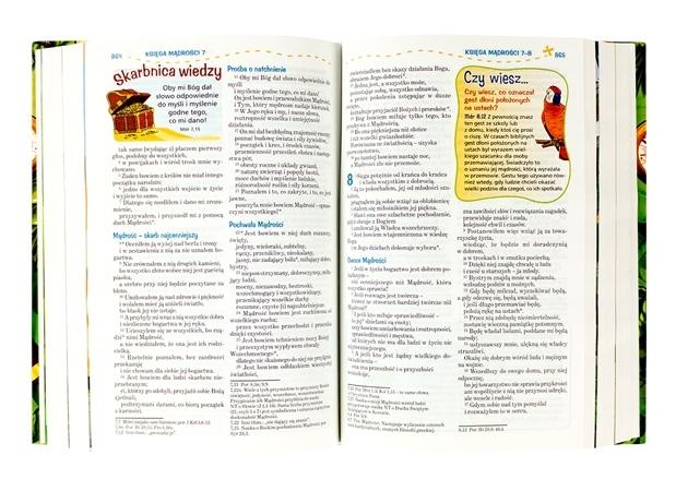 Pismo Święte dla młodych. Biblia z papugą
