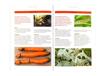 Choroby i szkodniki roślin - zawartość