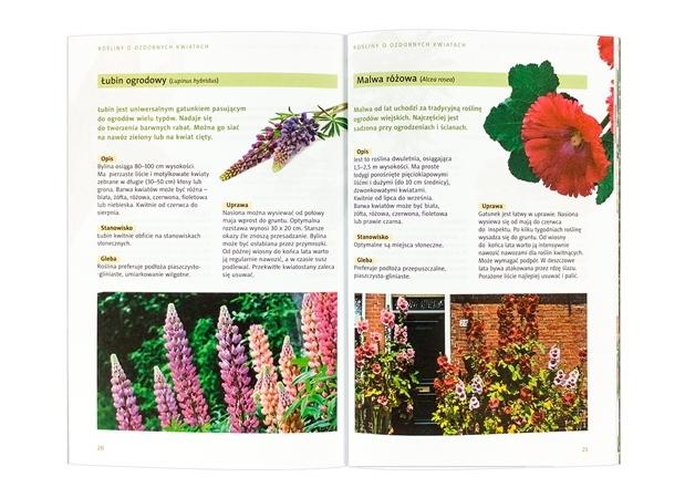 Kwiaty ozdobne  - zawartość
