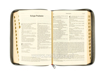 Biblia Pierwszego Kościoła - zawartość