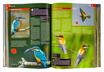 Zimorodek i żołna - ptaki - Ilustrowana encyklopedia zwierząt i roślin Polski