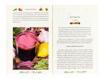 Jedz warzywa i chudnij - Ziołowe kuracje odtruwające i odchudzające - Zbigniew T. Nowak