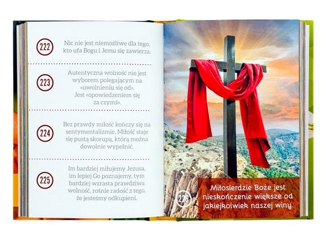 Bądźcie ziarnami świętości. Myśli Benedykta XVI na każdy dzień  - Zawartość książki