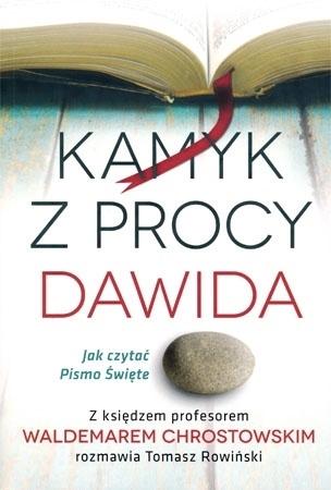 Kamyk z procy Dawida. Jak czytać Pismo Święte - Tomasz Rowiński, Waldemar Chrostowski
