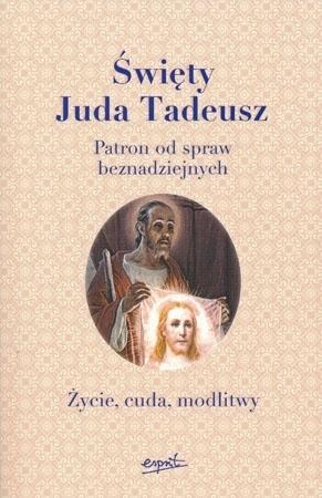 Święty Juda Tadeusz. Życie, cuda, modlitwy. Patron od spraw beznadziejnych - przekł. Joanna Ganobis