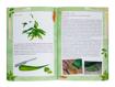 Aloes dla zdrowia i urody. Właściwości i zastosowanie terapeutyczne - Edyta Tkaczyk-Borówka : Poradnik zdrowotny