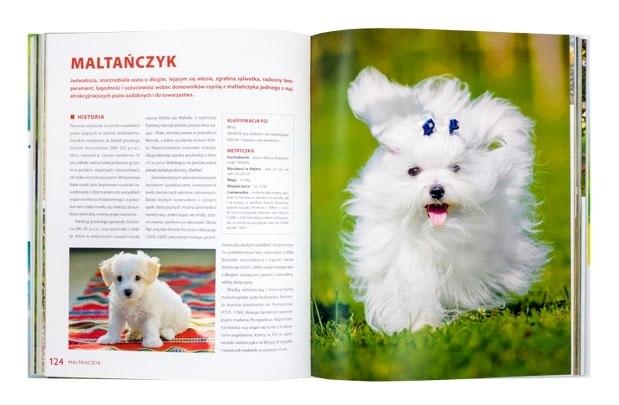 Psy rasowe - Izabela Przeczek : Album