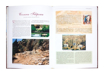 Ziemia Święta. Pielgrzymując śladami Jezusa - Album - Fernando Perfetti
