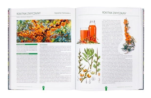 Zioła. Naturalne lekarstwa z pól i ogrodów : Album