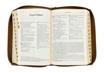 Biblia Pierwszego Kościoła - kasztanowa okładka : Pismo Święte