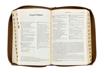 Biblia Pierwszego Kościoła - okładka w kolorze różu weneckiego