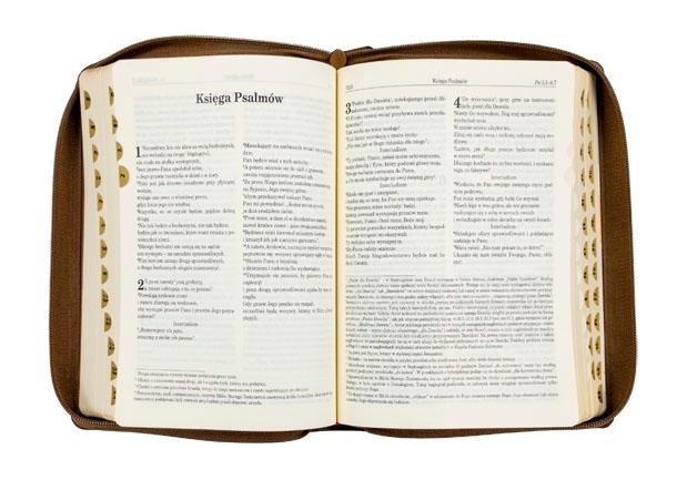 Biblia Pierwszego Kościoła - karmelowa okładka : Pismo Święte
