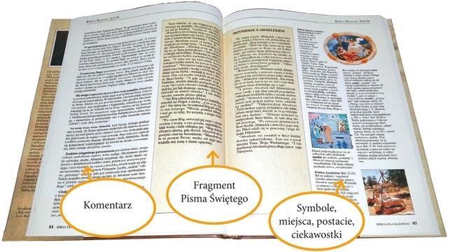 Biblia dla każdego. Tom 1-10 : Pismo Święte Starego i Nowego Testamentu
