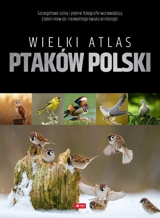 Wielki atlas ptaków polski : Atlas