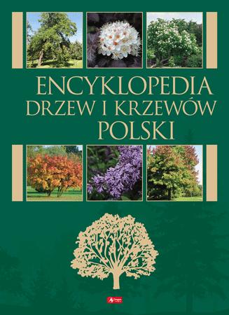 Encyklopedia drzew i krzewów Polski - Beata Węgrzynek, Monika Jędrzejczyk-Korycińska, Teresa Nowak