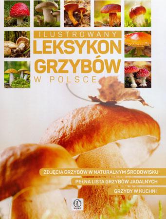 Ilustrowany leksykon grzybów w Polsce - Wiesław Kamiński