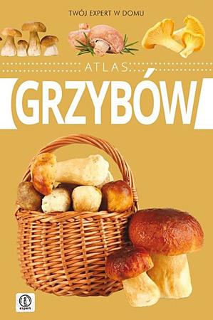 Atlas grzybów - Wiesław Kamiński : Poradnik