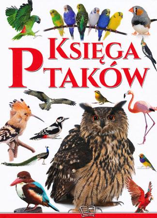 Księga ptaków - Praca zbiorowa
